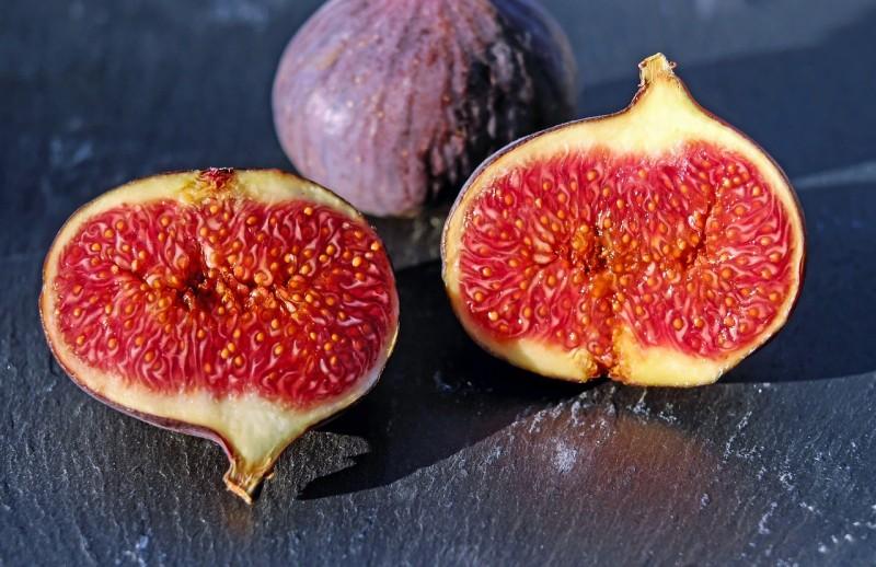 figs-1620590_1280