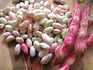 Farmers Market Escarole With Cranberry Beans