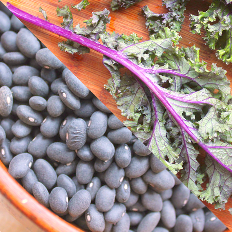 Black Beans and Kale Save the World