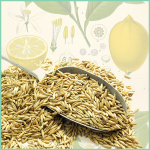 Kamut with Lemon and Mint Vegan Recipe by Ellen Kanner