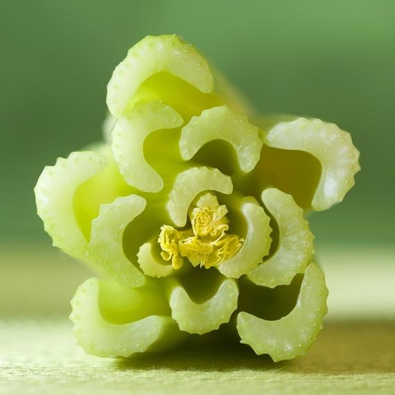 Paulette Phlipot photo of celery