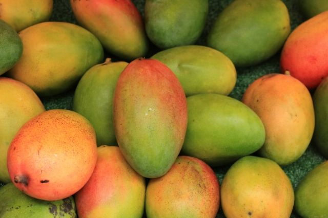 mangos in a pile