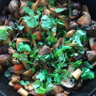 bohemian mushrooms